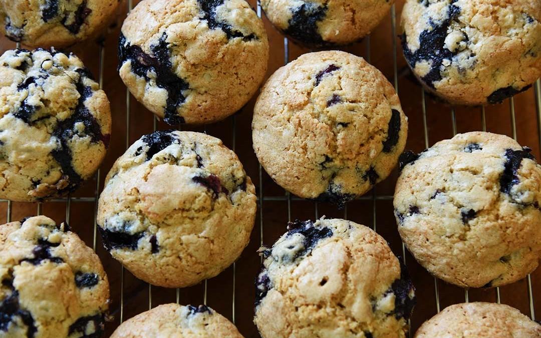 Jen's Blueberry Sunflower Seed Muffins