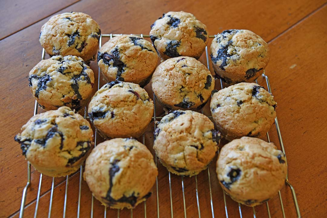 Jen's blueberry sunflower seed muffins - cool muffins on rack