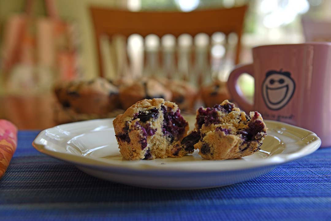 Jen's blueberry sunflower seed muffins - enjoy muffins for breakfast