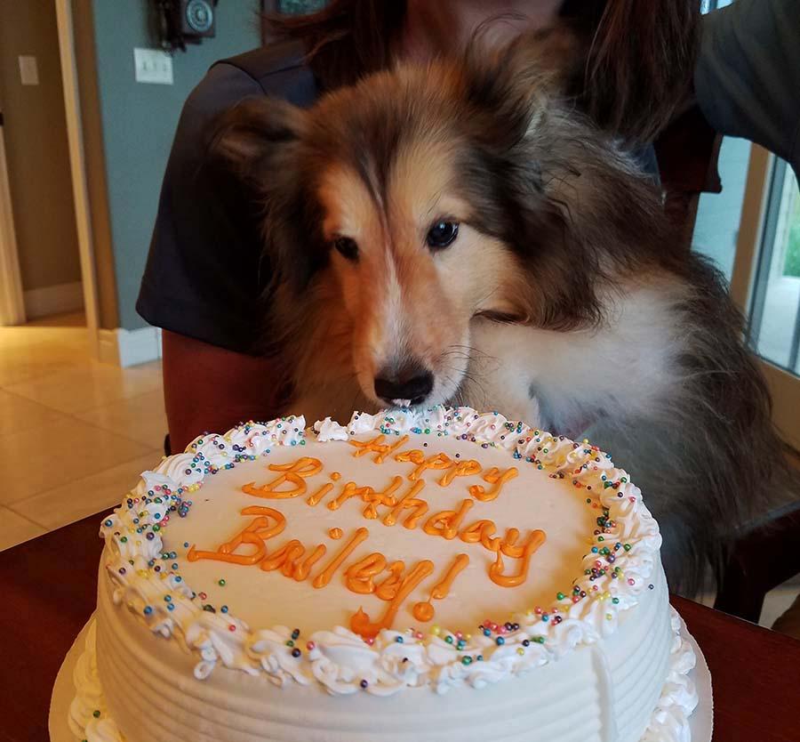 Quick trip to Iowa - Bailey's birthday