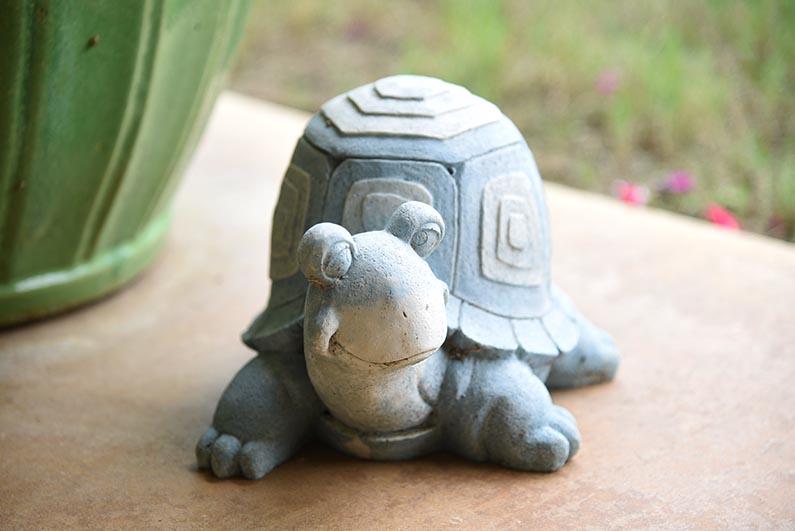 2017-08-23 Photos of My Flowers - Tami's turtle
