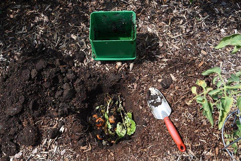 2017-10-07 Easy Composting - put the kitchen scraps into the hole