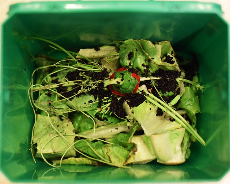 2017-10-07 Easy Composting - put your kitchen scraps in the composter