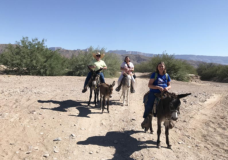 34 - 2017-11-07 Trip to Big Bend - Rio Grande - Boquillas - Our Burros - 1