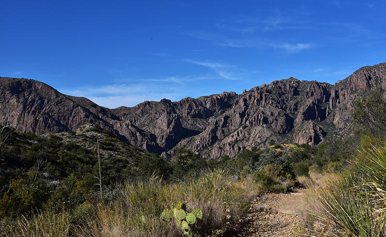 A1 - 2017-11-07 Trip to Big Bend - Chisos Mountains - 1