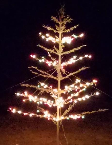 2017-12-30 Happy Holidays from Izzie - Grandma's Christmas tree