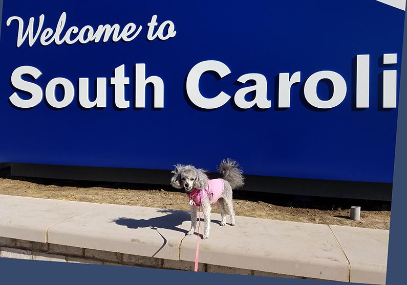 2018-02-01 Trip to Hilton Head Island SC - Welcome to South Carolina and Izzie